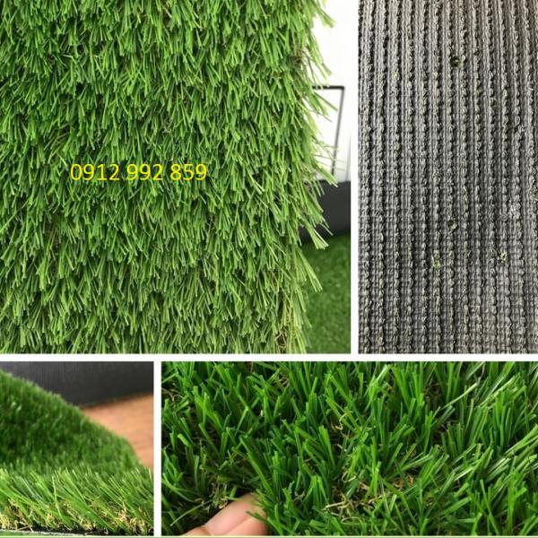 3. cỏ 20, 20mm- đế cứng