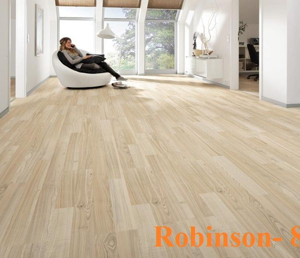 san-go-robinson-821
